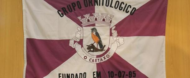 Ornitología-Cartaxo-canarios