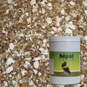 Bipal-Forte-Deportivo