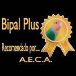 AECA-Agapornis-Bipal