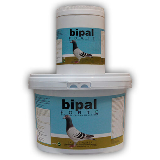 Bipal-Forte-Palomas-Mensajeras
