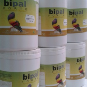 Bipal-Forte-Palomos-Deportivos
