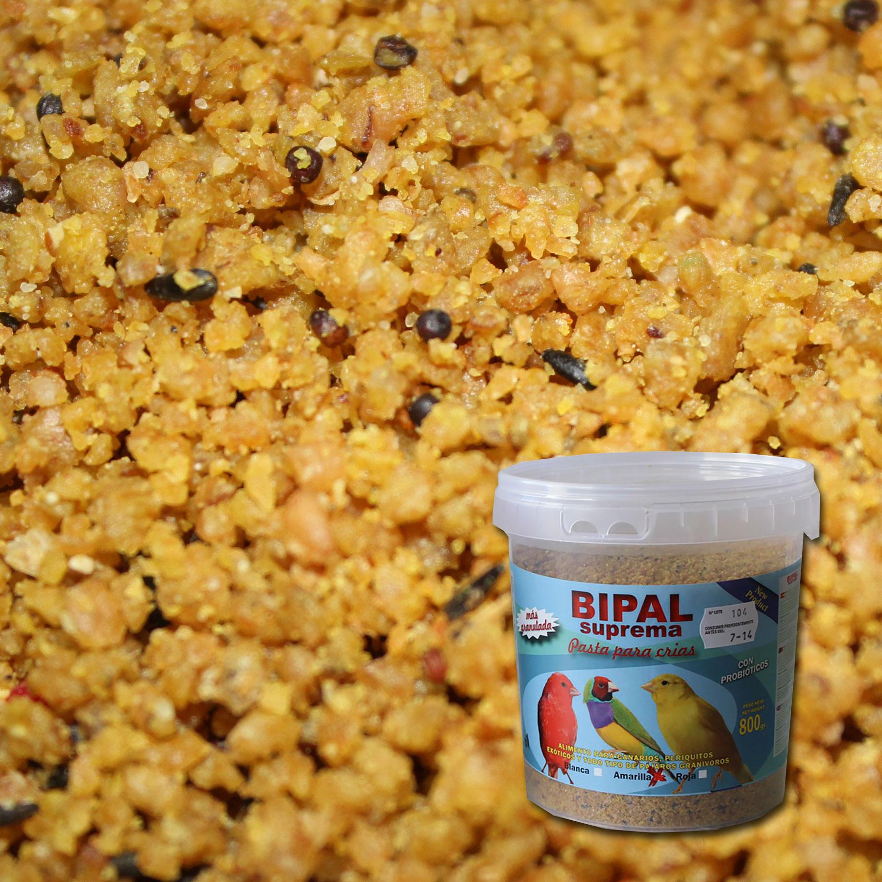 Pasta-de-cría-Amarilla-Probioticos