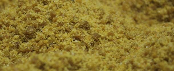 Pasta-de-cría-agapornis