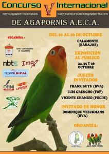 Concurso Internacional de AECA