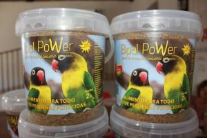 Pasta de cría para agapornis precio especial AECA