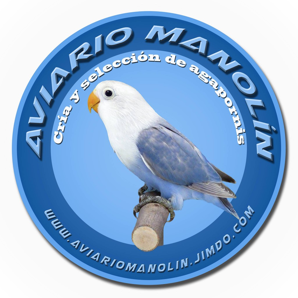 aviario manolin agapornis