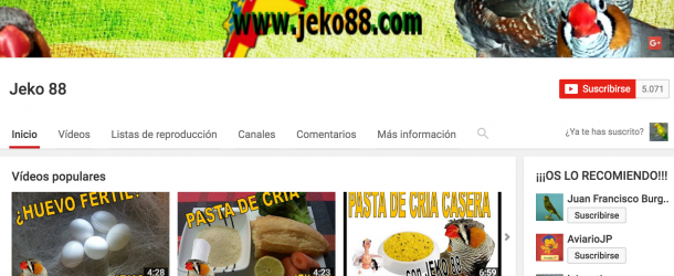 Sorteo productos AVES