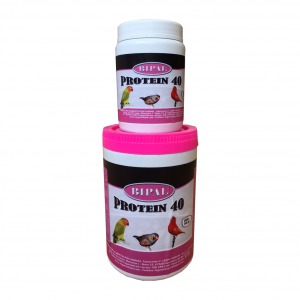 Bipal-Protein