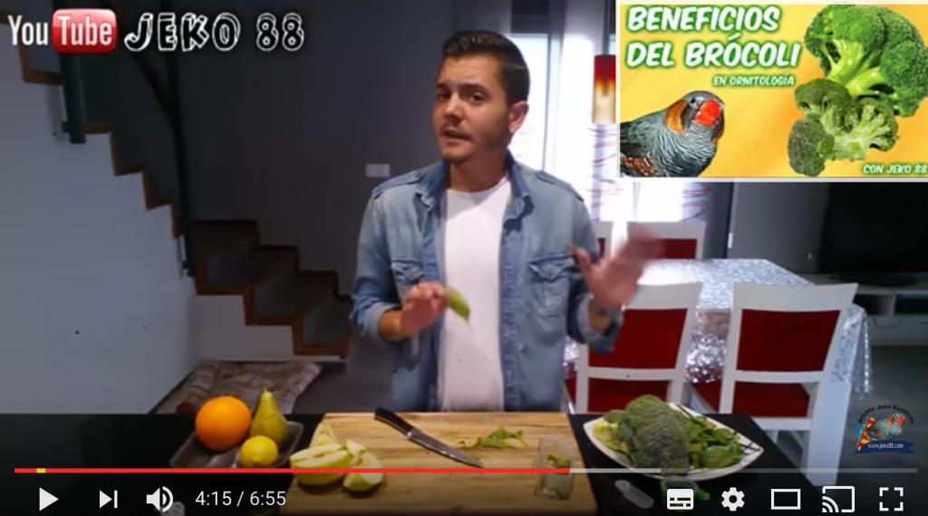 fruta-verdura-aves