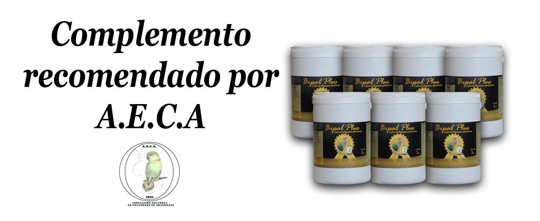 Complemento-recomendado-AECA