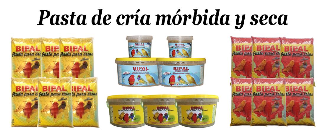 Pasta-de-cría-canarios