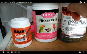 proteina-canarios