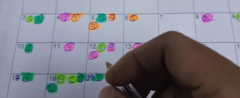 control-calendario-cría