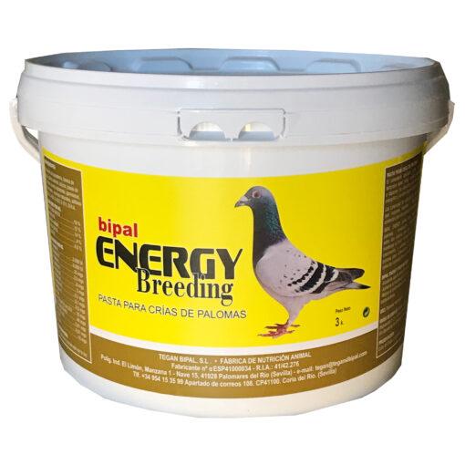 BIPAL-ENERGY