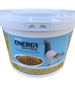 Bipal-Energy-Palomas-Mensajeras